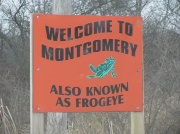 Montgomery Michigan